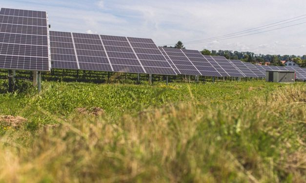 Green light for Weesow-Willmersdorf solar park