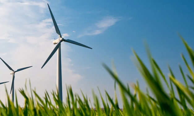 Prysmian supports renewable energy industry worldwide