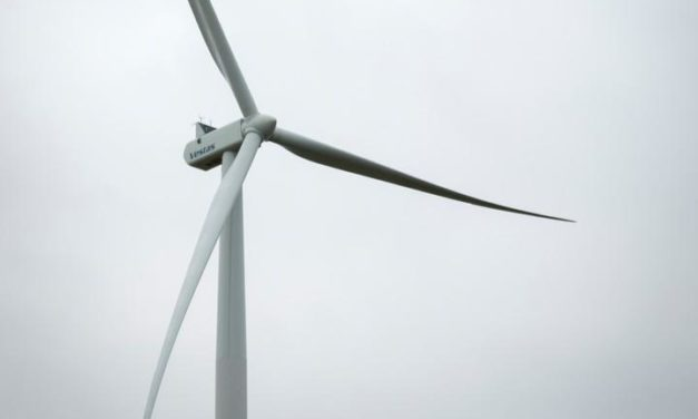 Vestas wins 41 MW order in China